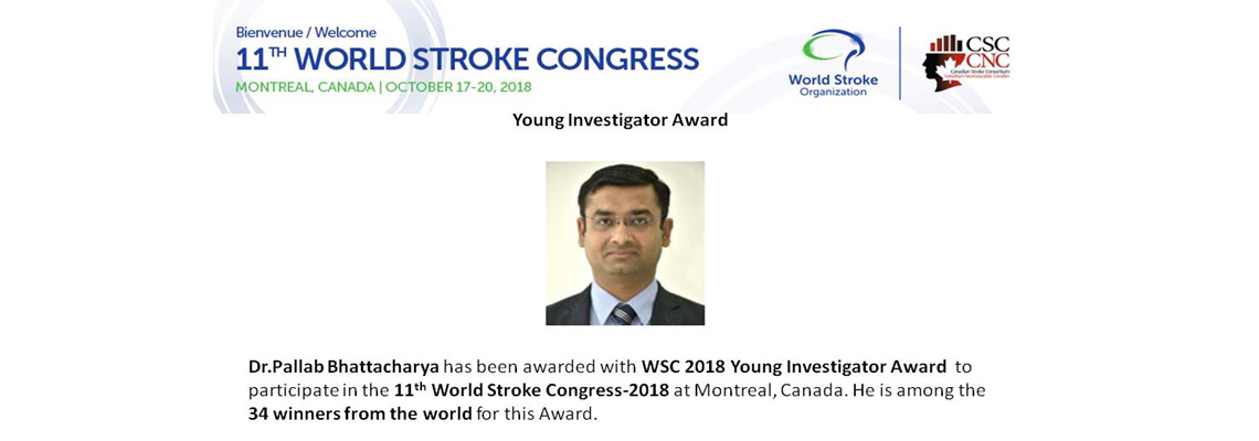 Young Investigator Award